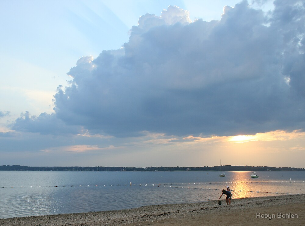calm after the storm; Lloyd Harbor NY by Robyn Bohlen