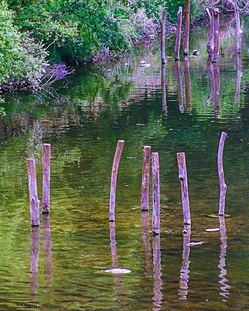 Water reflections by djacobson