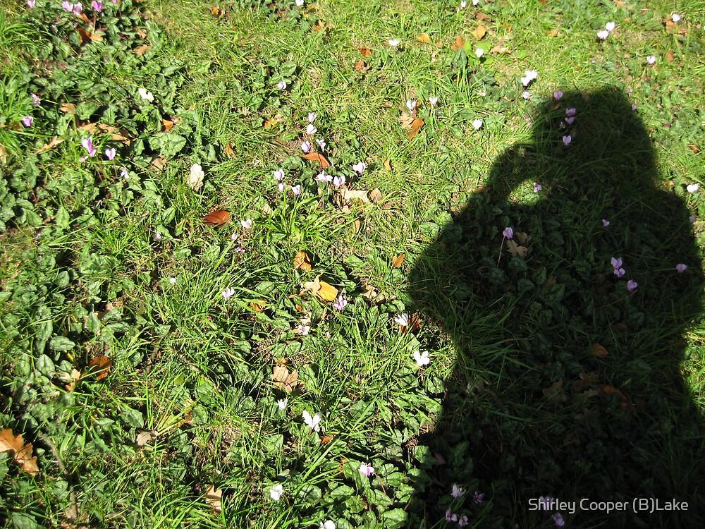 Shadow 1 by Shirley Cooper (B)Lake