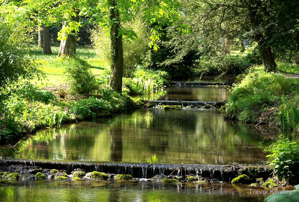 Peaceful Waters by Trevor Kersley