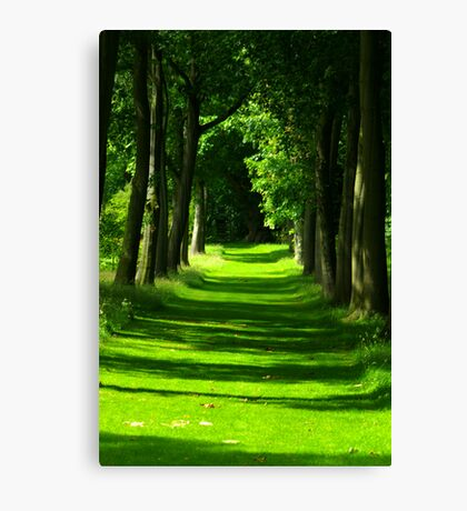 The Avenue - Thorp Perrow Canvas Print