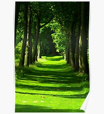 The Avenue - Thorp Perrow Poster