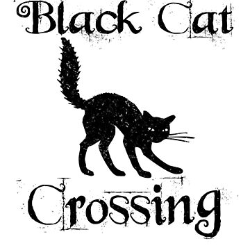 Black Cat Crossing Funny Saying Spooky Halloween by lbhw