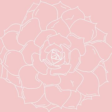 succulent pink white plant outline by tbootz