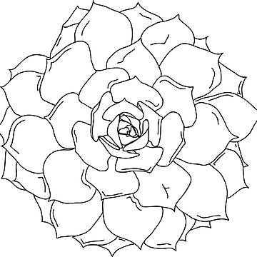 succulent outline black and white plant by tbootz