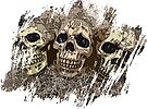Three Skulls Art by Melissa J Barrett