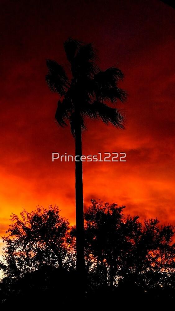 Fiery Palm tree Sunset by Princess1222