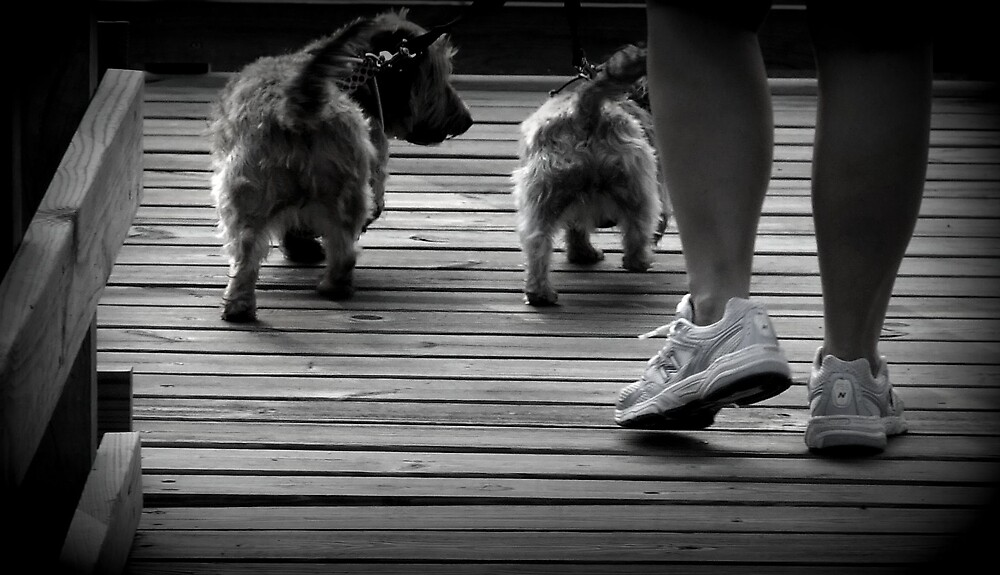 Walking Buddies by corilynlong