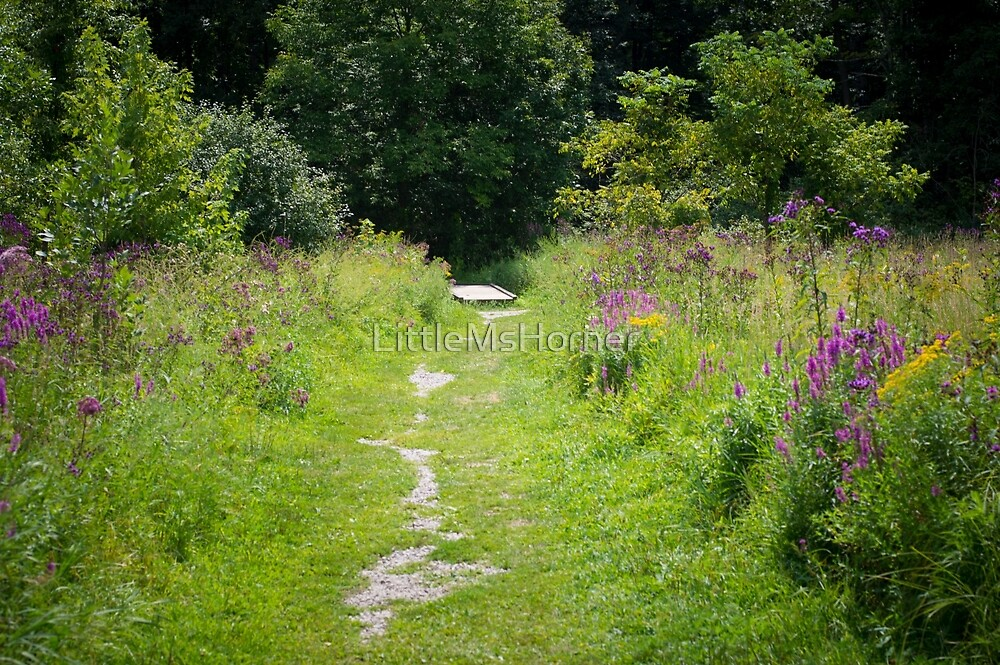 Natural Path by LittleMsHorner