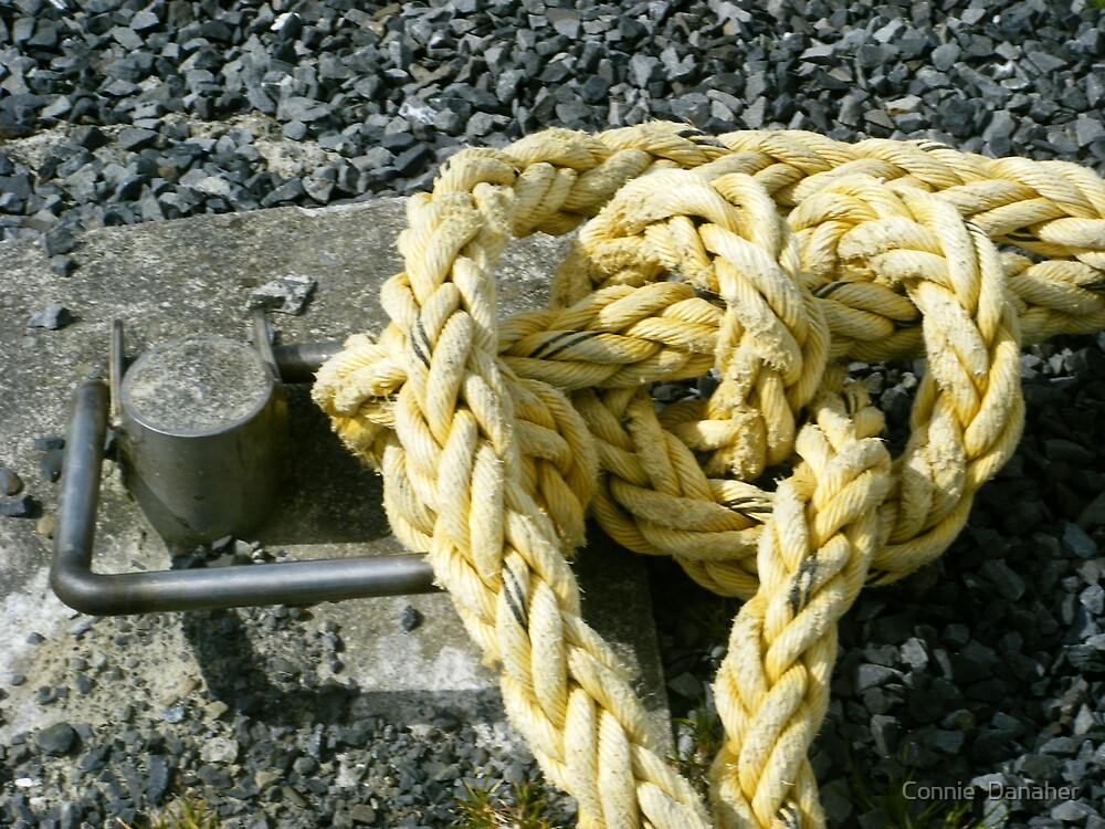 Old Rope by Connie  Danaher