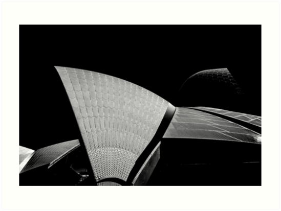 Sydney Opera House Sails Detail shot in Mono. by DavidMay