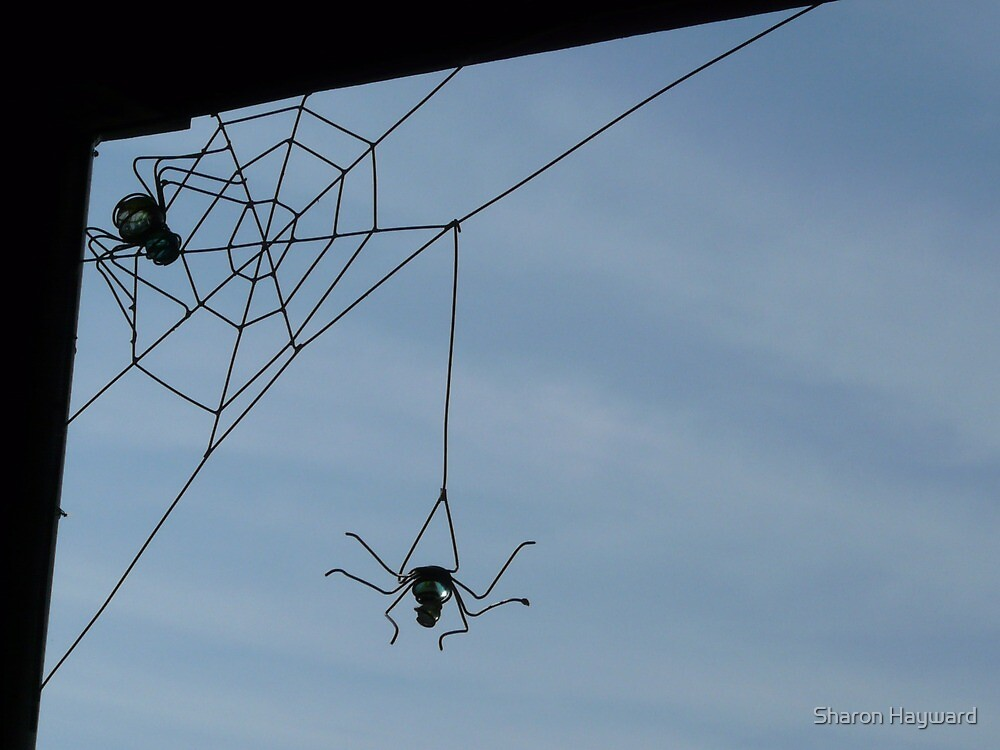 Wire Spiders and Web by Sharon Hayward