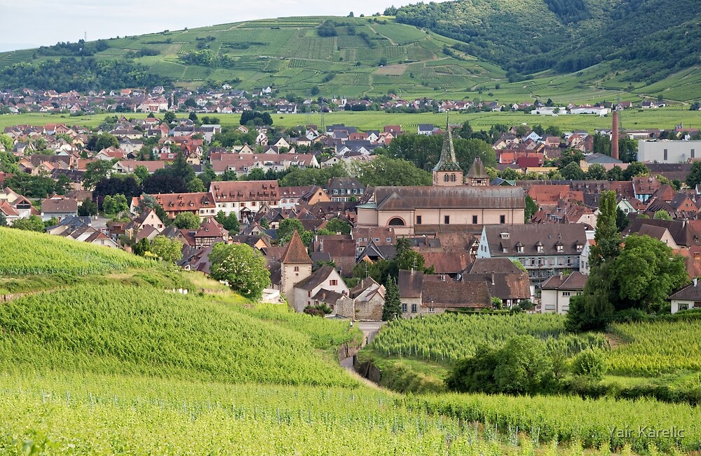 Panoramic View of Turckheim by Yair Karelic