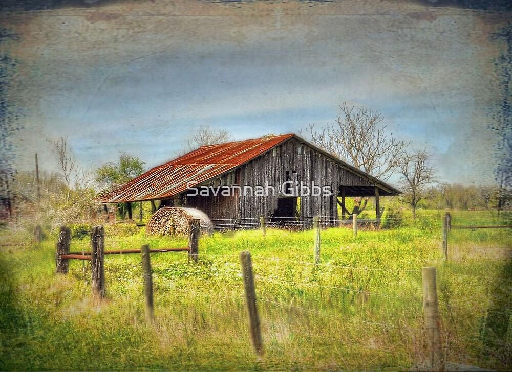Old Barn by Savannah Gibbs