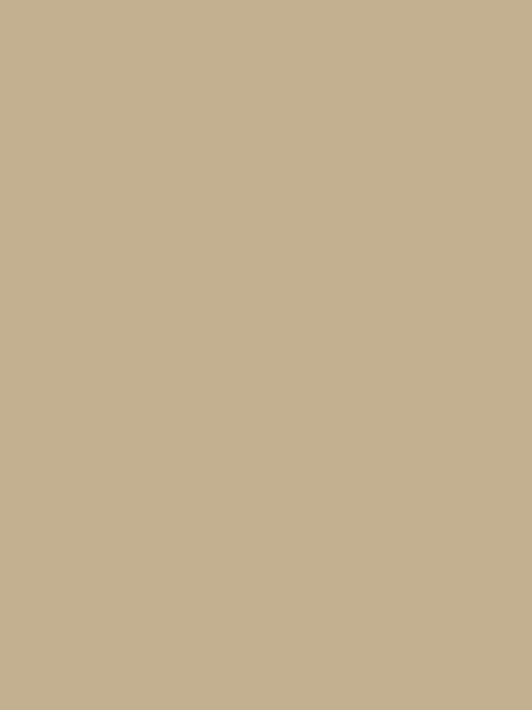 Khaki Brown by SolidColors