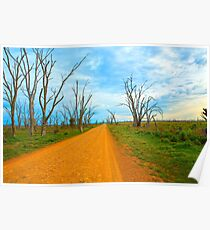 Road Around the  wetlands... Poster