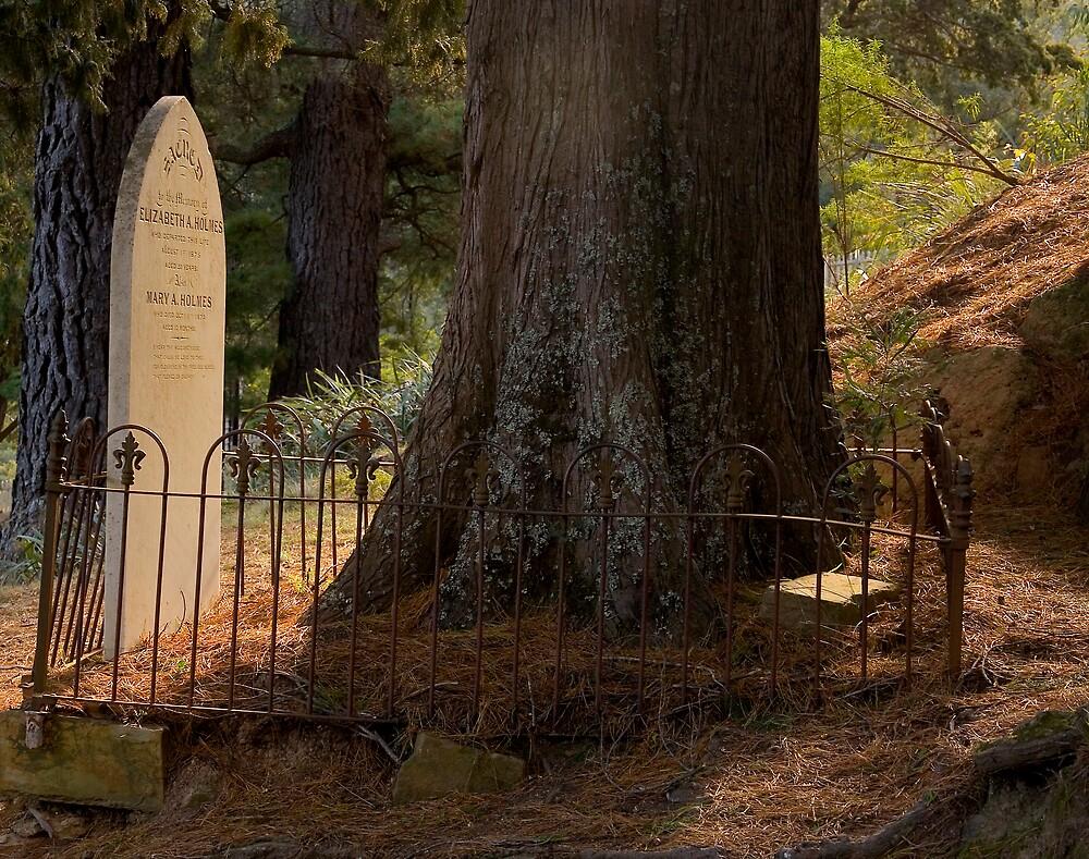 Walhalla Cemetery by Fred Everett