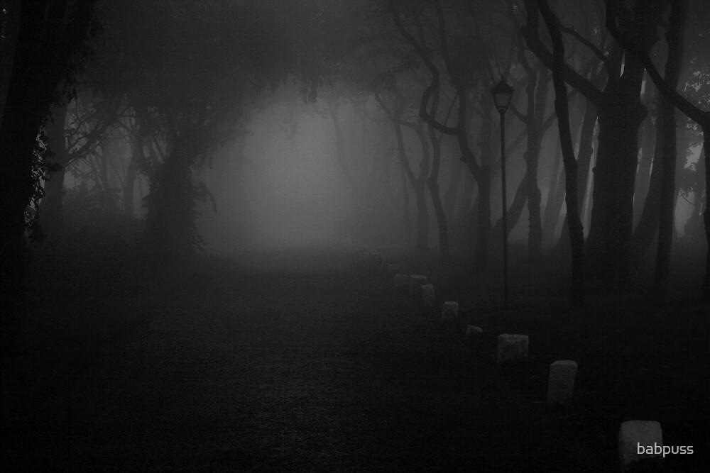 Misty Road by babpuss