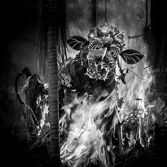 Bali Cremation Bull - Travel fine art Photographic Print by Glen Allison