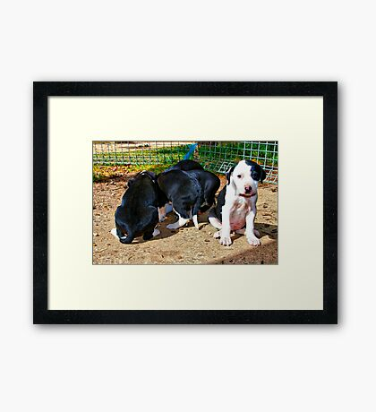 """What about me? it isn't fair"" Framed Print"