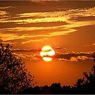 Sunset Silhouette by Glenna Walker