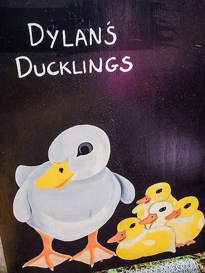 Dylans Ducklings by Michael McGimpsey