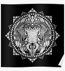 Elephant Medallion Poster