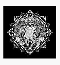 Elephant Medallion Photographic Print