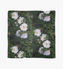 White Roses on a Bed of Black and Green  Scarf