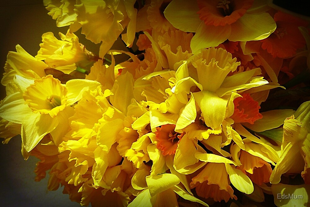 *Daffodils at the Market* by EdsMum
