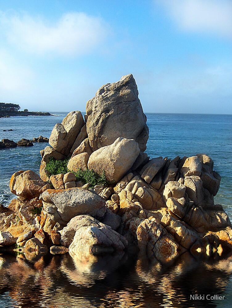 Rocks by Nikki Collier