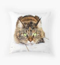 Cat Maine coon Throw Pillow