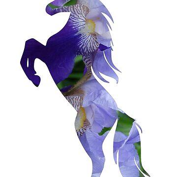 Unicorn  by Manitarka