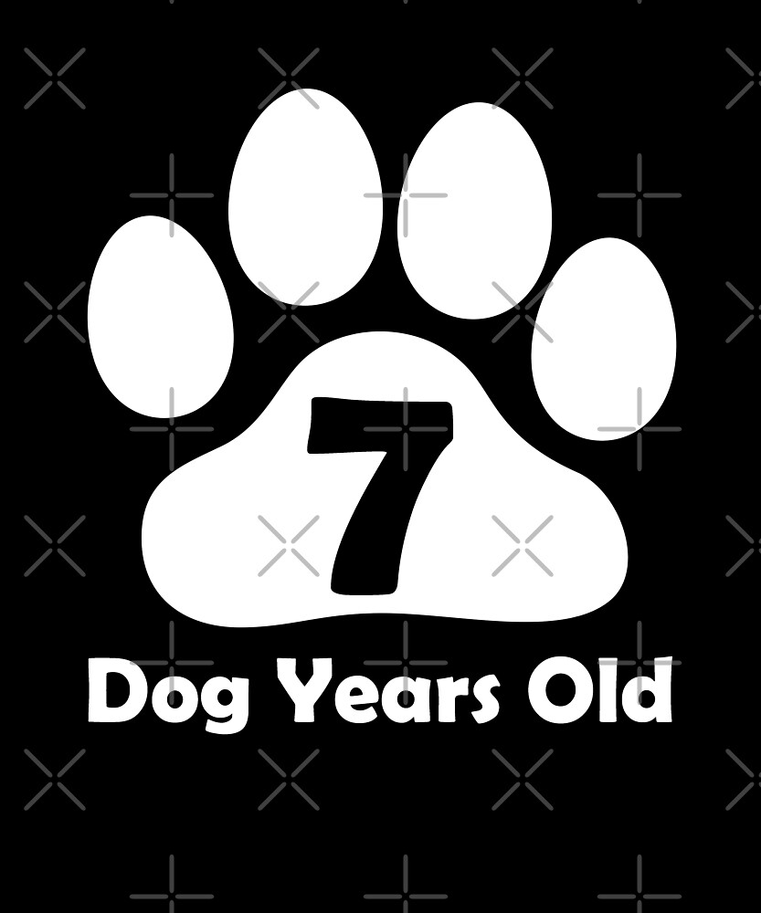 7 Dog Years Old Funny 1st Birthday Gift Puppy Lovers by SpecialtyGifts