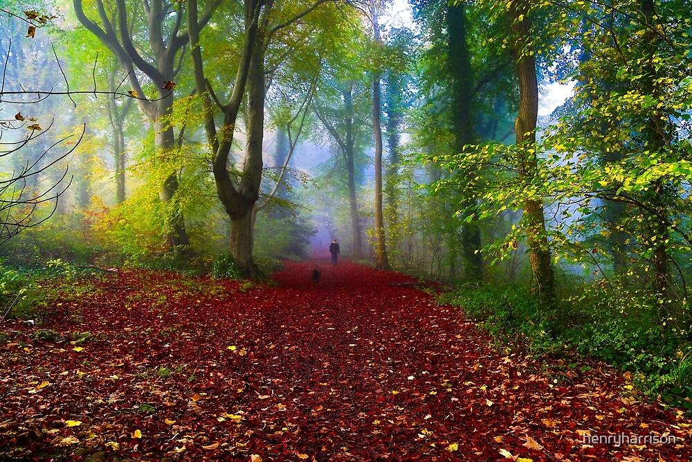 Walking the dog by henryharrison