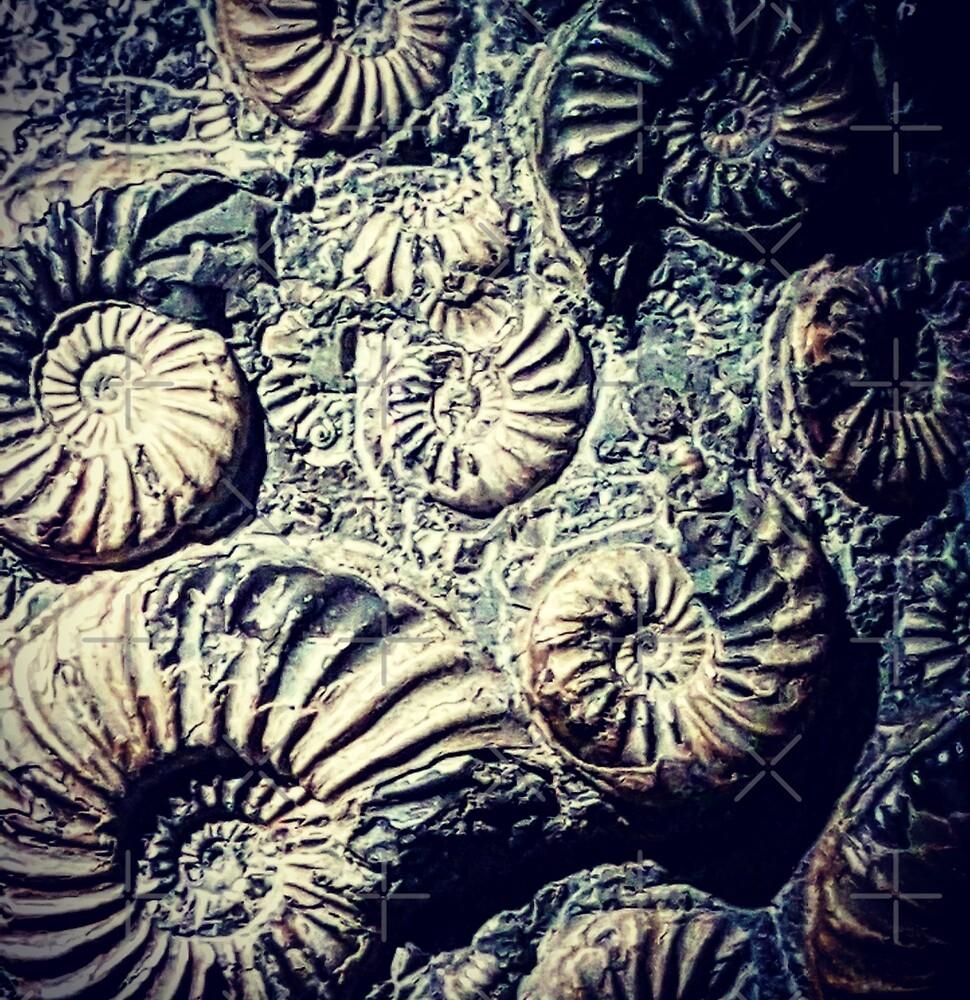 Fossils  by BeatnikBuddha
