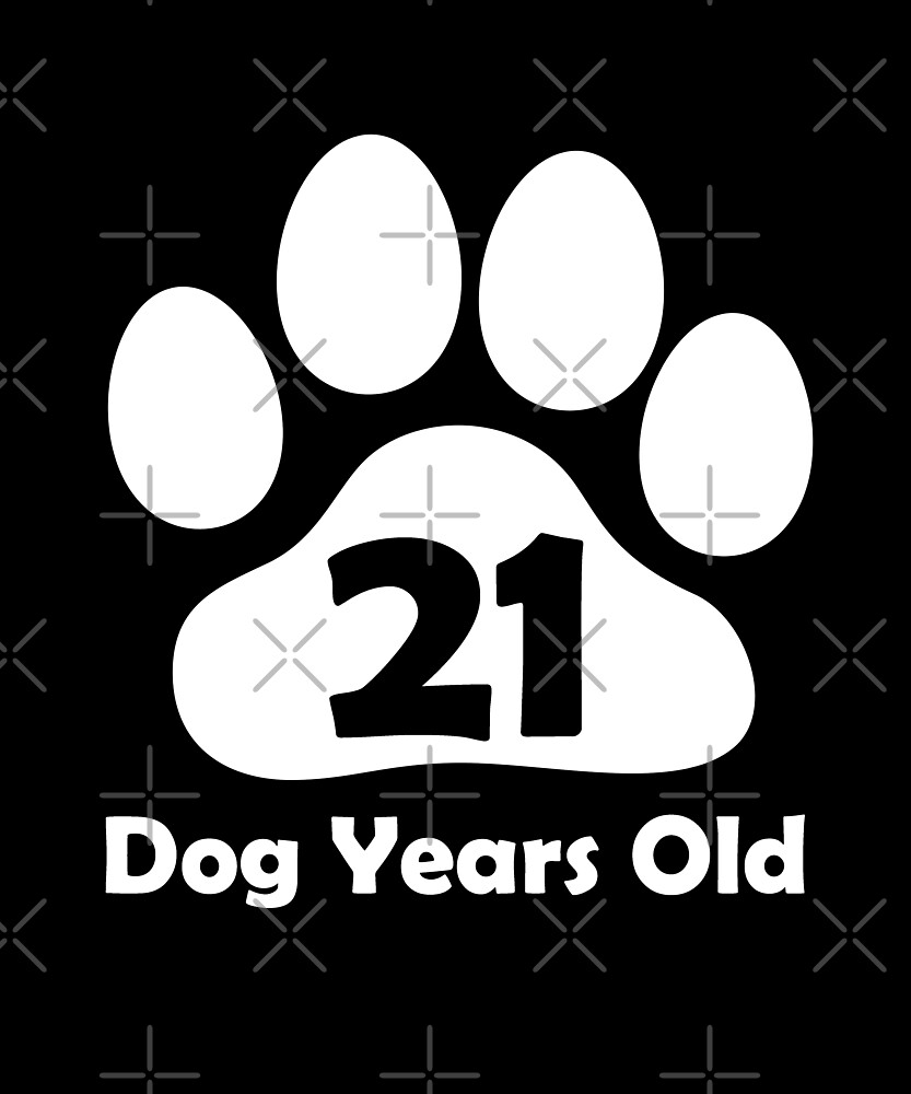 Dog Years Old Funny 3rd Birthday Gift Puppy Lovers by SpecialtyGifts