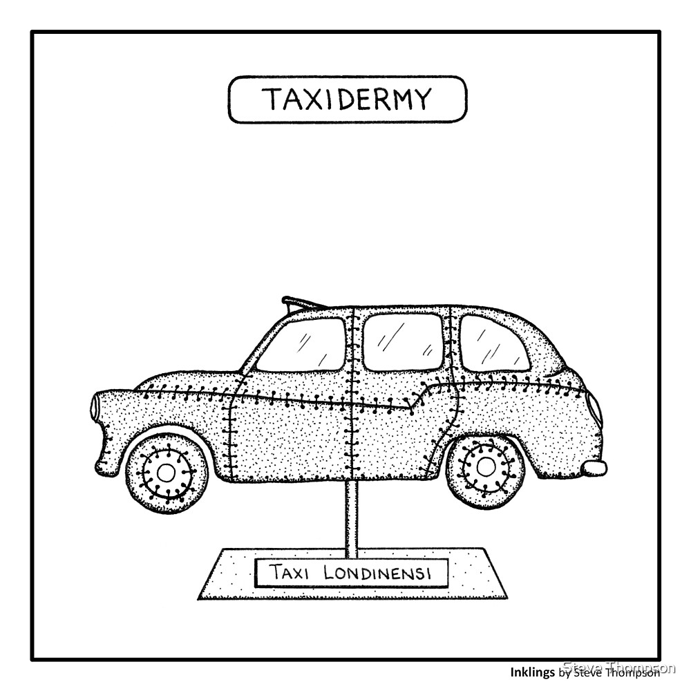 Taxidermy by Steve Thompson