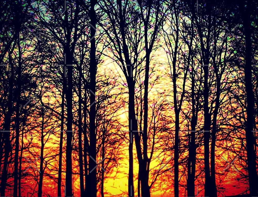 Winter Sunset by BeatnikBuddha