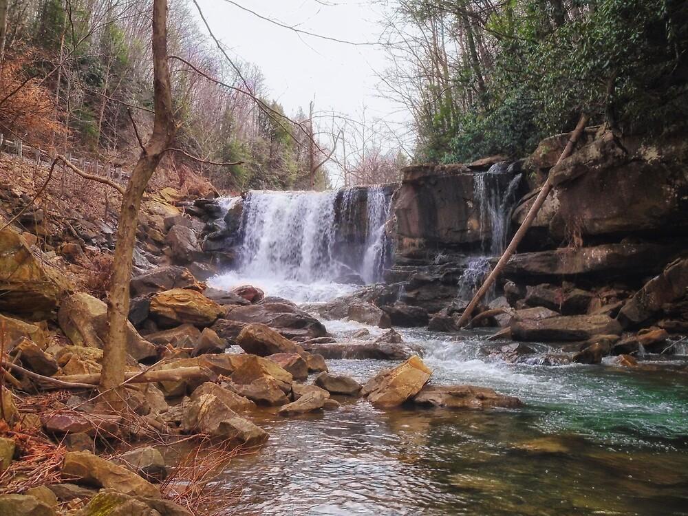 Laurel Creek Falls  by Paul Lubaczewski