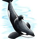 Bingo - Draw Every Captive Orca Project nr. 2 by DutchOrca