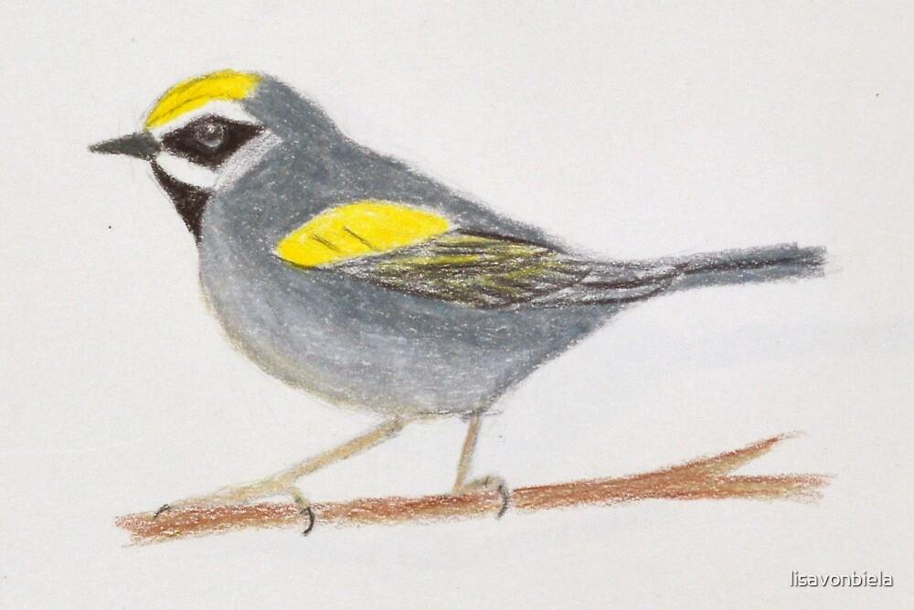 Yellow Warbler by lisavonbiela