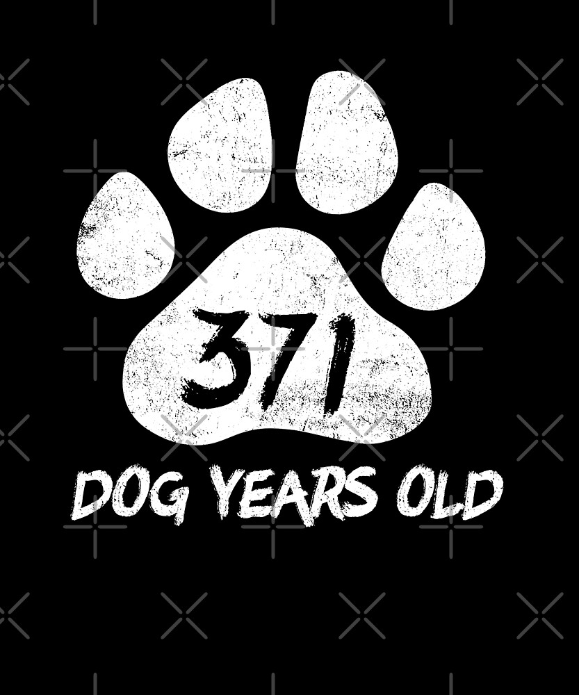 371 Dog Years Old Funny 53rd Birthday Novelty Gift by SpecialtyGifts
