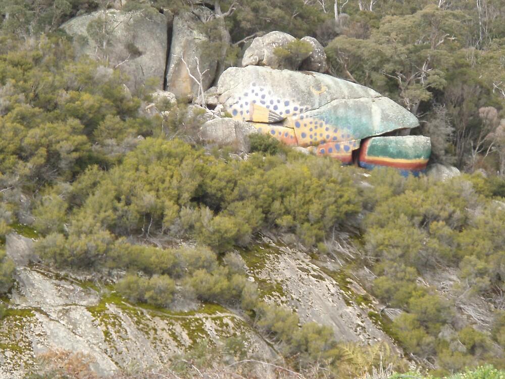 "rock boulder ""fish"" at Derby, Tasmania by gaylene"