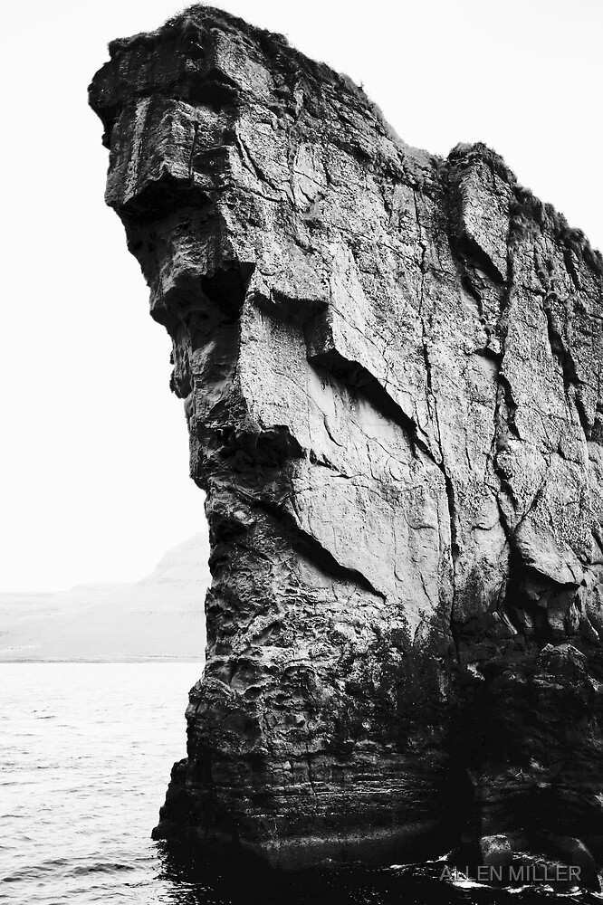 Rock Face by ALLEN MILLER