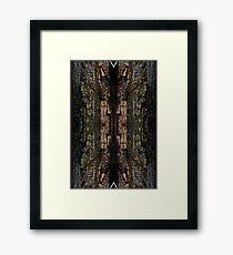 Mossy wood bark pattern Framed Print