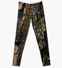 Cool Brown wood bark with yellow lichen pattern Leggings