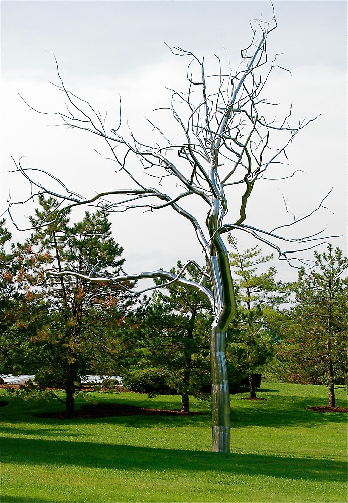A Silver Tree by Jim Caldwell