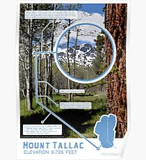 Mount Tallac Infographic Poster