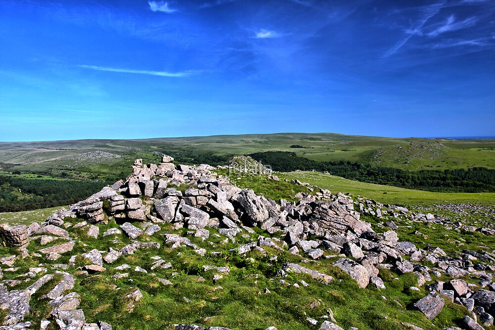 Dartmoor - The view from Sharpitor by julala